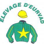 élevage de chevaux en Normandie troteeurs logo