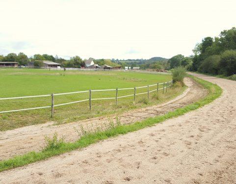 piste élevage chevaux
